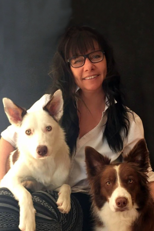 Nathalie-Soleil avec New Jersey et Brooklyn, borders collies